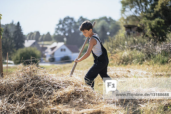 Boy in overalls working on sunny farm