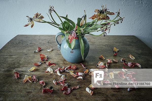Dead flower petals falling from stems in vase