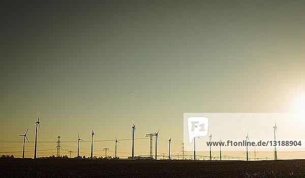 Wind turbines against sunny sunset sky  Brandenburg  Germany