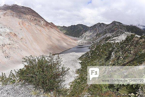 Blick vom Krater des Vulkans Chaitén auf durch Vulkanausbruch zerstörten Wald  bei Puente los Gigios  Pumalín Park  Chaitén  Carretera austral  Región de los Lagos  Chile  Südamerika