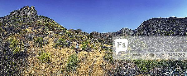 Fruchtbares Tal von Imada mit Palmen und Wanderer  La Gomera  Kanarische Insel  Spanien  Europa