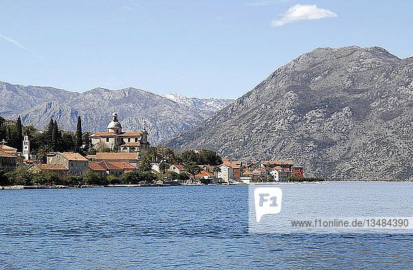 Prcanj  Bucht von Kotor  Montenegro  Europa