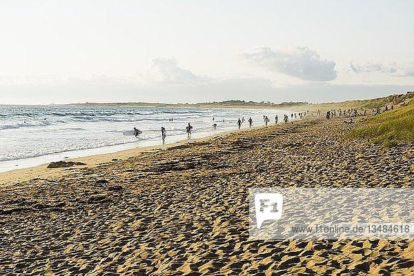 Strand  Halbinsel Quiberon  Bretagne  Frankreich  Europa