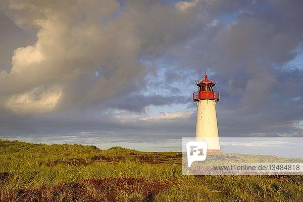 Leuchtturm List-West  Ellenbogen  Sylt  Nordfriesland  Schleswig-Holstein  Deutschland  Europa