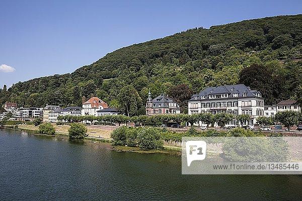 Wohnhäuser am Ufer des Neckar  Heidelberg  Baden-Württemberg  Deutschland  Europa