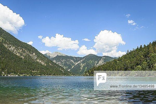 Plansee  Ausblick vom Ufer  Berglandschaft  Bergsee  Berglandschaft  Tiroler Alpen  Reutte  Tirol  Österreich  Europa