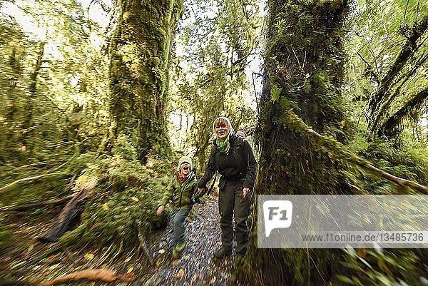 Mutter mit Kind beim wandern im El Bosque Encantado  gemäßigter Regenwald mit Moos und Flechten  Carretera Austral  Queulat National Park  Cisnes  Región de Aysén  Chile  Südamerika