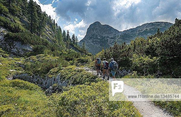 Wanderer auf Wanderweg zum Kärlingerhaus  hinten Gipfel Viehkogel  Nationalpark Berchtesgaden  Berchtesgadener Land  Oberbayern  Bayern  Deutschland  Europa