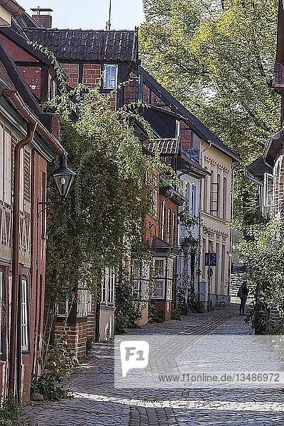 Straße mit historischen Alstadthäusern  Lüneburg  Niedersachsen  Deutschland  Europa