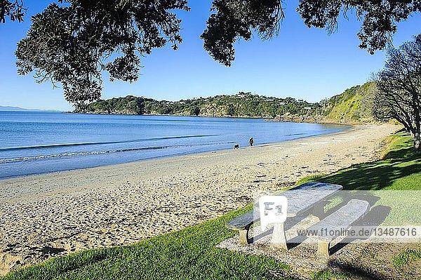 Picknick-Tisch am Oneroa Beach  Waiheke Island  Nordinsel  Neuseeland  Ozeanien
