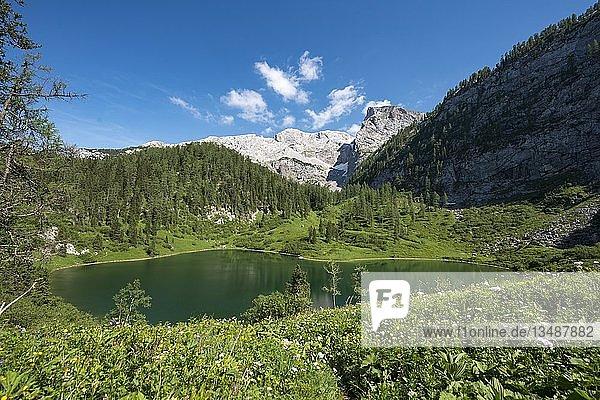 Grünsee am Wanderweg zum Kärlinger Haus  Nationalpark Berchtesgaden  Berchtesgadener Land  Oberbayern  Bayern  Deutschland  Europa