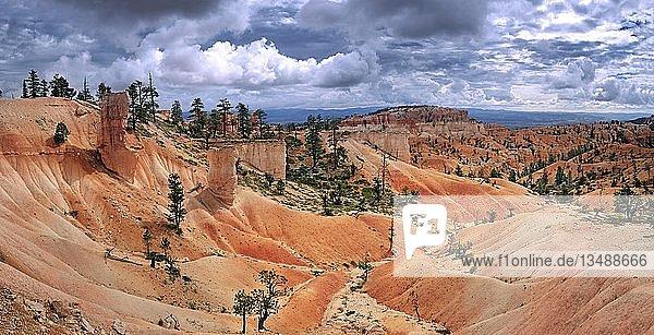 Queens Garden Trail mit Sandsteinsäulen oder Hoodoos in der durch Erosion geschaffenen Landschaft  Bryce-Canyon-Nationalpark  Utah  USA  Nordamerika
