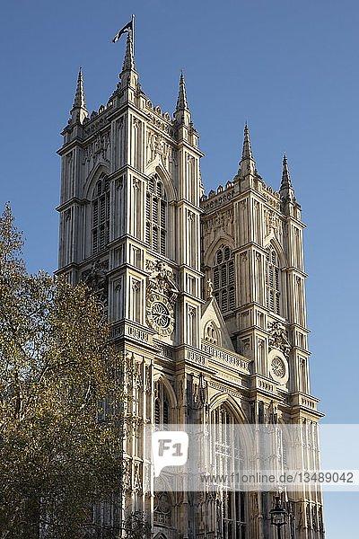 Westminster Abbey  London  England  Großbritannien  Europa