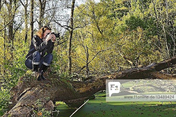 Fotografin auf einem umgestürzten Baum über einem Sumpf