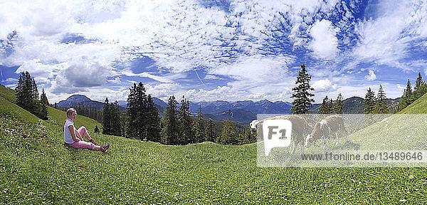 Mädchen und Kühe bei der Blaubergalm  Tirol  Österreich  Europa