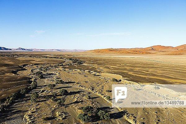 Luftaufnahme  Tsauchab Trockenfluss  Sossuvlei  Namib-Naukluft-Nationalpark  Namibia  Afrika