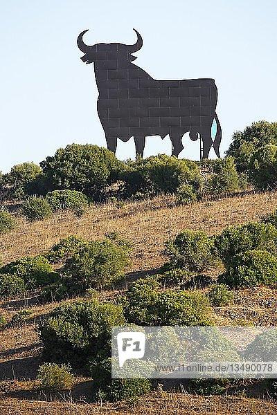 Schwarze Silhouette eines Stiers  Stierfigur Osborne-Stier  heute nationales Symbol für Spanien  Provinz Cadiz  Spanien  Europa