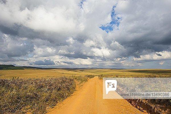 Staubige Straße durch den Nyika Nationalpark  Malawi  Afrika