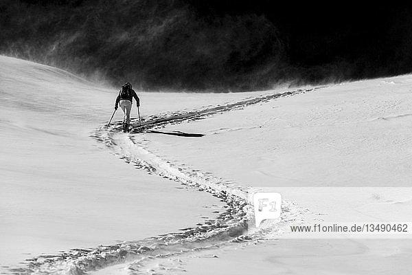 Skiourengeher in winterlicher Landschaft vor dunklem Hintergrund  Sankt Antönien  Prättigau  Graubünden  Schweiz  Europa