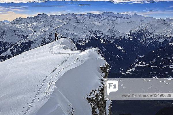 Skitourengeher am verschneiten Gipfelgrat zum Alvier  dahinter die Glarner Alpen  Alviergruppe  Appenzeller Alpen  Kanton St. Gallen  Schweiz  Europa