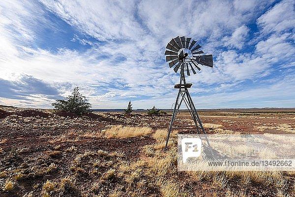Pampa mit alten Windrad auf einer Farm im Bosques Petrificados de Jaramillo National Park  Patagonien  Argentinien  Südamerika