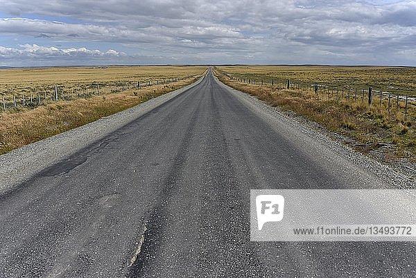 Straße durch die Pampa von Feuerland  Tierra del Fuego  von Porvenier nach Ushuaia  Argentinien  Südamerika