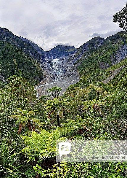 Gletscherzunge  Fox Gletscher mit Fox River  tropische Vegatation  Westland  Westküste  Südinsel  Neuseeland  Ozeanien