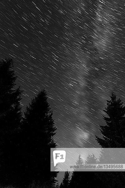 Milchstraße bei Nacht mit Silhouette vom Wald  Karpaten  Sacharpatien  Ukraine  Europa