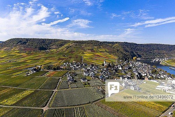 Luftaufnahme  Poltersdorf mit Weinbergen an der Mosel  Landkreis Cochem-Zell  Rheinland-Pfalz  Deutschland  Europa