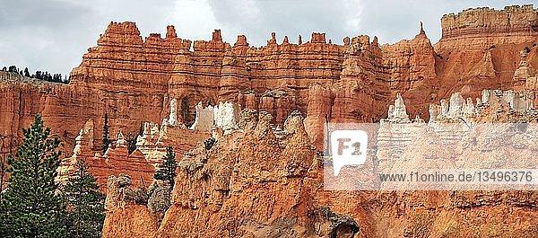 Queens Garden  eine durch Erosion geschaffene Landschaft von Sandsteinsäulen oder Hoodoos  Bryce-Canyon-Nationalpark  Utah  USA  Nordamerika