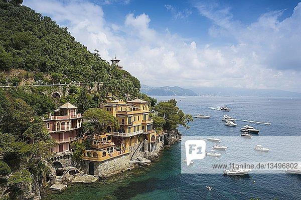 Ortsansicht von Dorf mit bunten Häusern und Hafen  Portofino  Provinz Genua  Ligurien  Italien  Europa