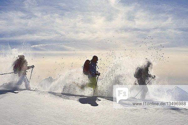 Drei Schneeschuhgeher laufen im Schnee  Schneeschuhtour auf das Fellhorn  Reit im Winkl  Bayern  Oberbayern  Deutschland  Europa