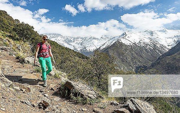 Wanderin auf einem Wanderweg  hinten Sierra Nevada  schneebedeckte Berge bei Granada  Andalusien  Spanien  Europa