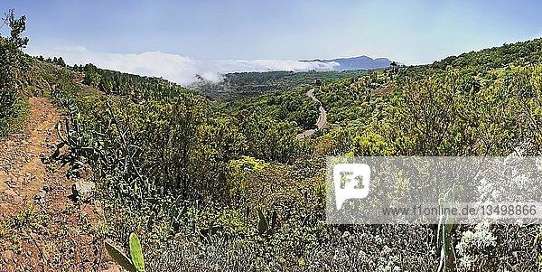 Canada Grande  Agulo  La Gomera  Kanarische Insel  Spanien  Europa