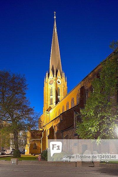 Kirche St. Petri  Altstadt  Buxtehude  Niedersachsen  Deutschland  Europa