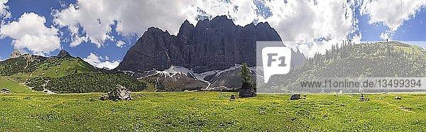 Frühlingswiese im Laliderertal mit Blick zu den Lalidererwänden  Karwendel  Tirol  Österreich  Europa