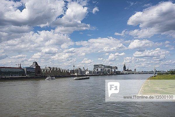 Ausblick über den Rhein zum Reinauhafen mit den Kranhäusern  Köln  Nordrhein-Westfalen  Deutschland  Europa