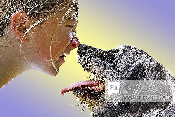 Mädchen und Hund berühren sich mit der Nase