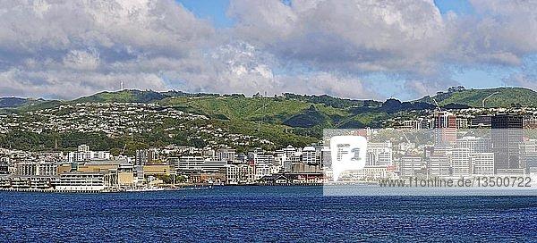 Stadtansicht vom Meer  Panoramaansicht  Wellington  Nordinsel  Neuseeland  Ozeanien