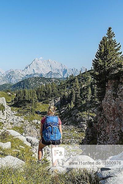 Wanderin mit Rucksack  Wanderweg in den Funtenseetauern  hinten Watzmann  Nationalpark Berchtesgaden  Berchtesgadener Land  Oberbayern  Bayern  Deutschland  Europa