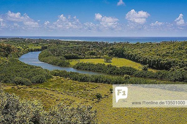 Wailua River in grüner Landschaft  Kauai  Hawaii  USA  Nordamerika