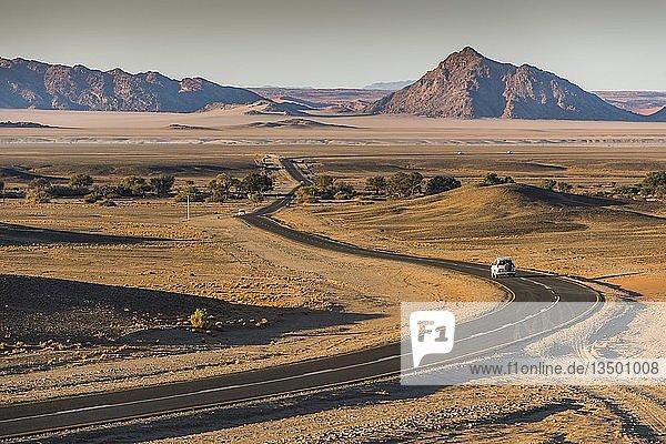 Straße im Sossusvlei  Namib-Wüste  Namib Naukluft Park  Region Hardap  Namibia  Afrika