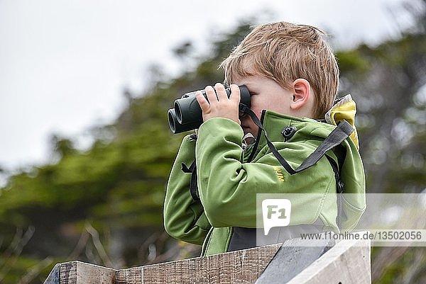 Interessierter Junge schaut durch ein Fernglas  Punta Arenas  Patagonien  Chile  Südamerika