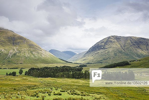 Links Berg Beinn Dorain  Landschaft nahe Bridge of Orchy  West-Highlands  Vereinigtes Königreich
