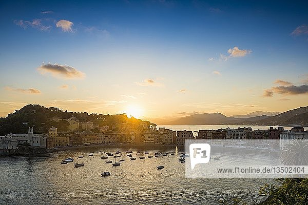 Ortsansicht mit Hafen in der Bucht Baia del Silenzio bei Sonnenuntergang  Sestri Levante  Provinz Genua  Riveria di Levante  Ligurien  Italien  Europa