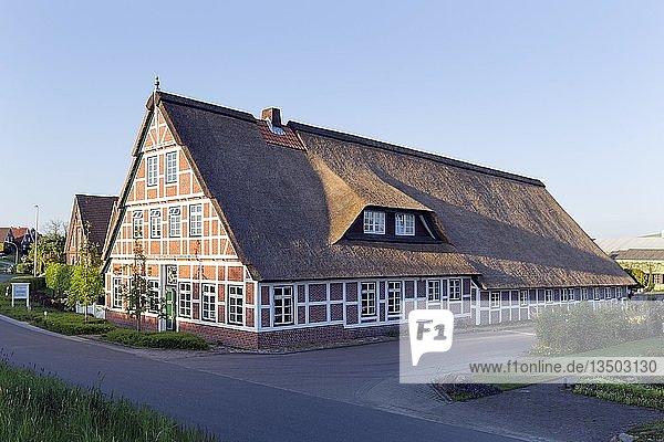 Altländer Bauernhaus von 1712  Fachwerkhaus mit Reetdach  Estebrügge  Jork  Altes Land  Niedersachsen  Deutschland  Europa