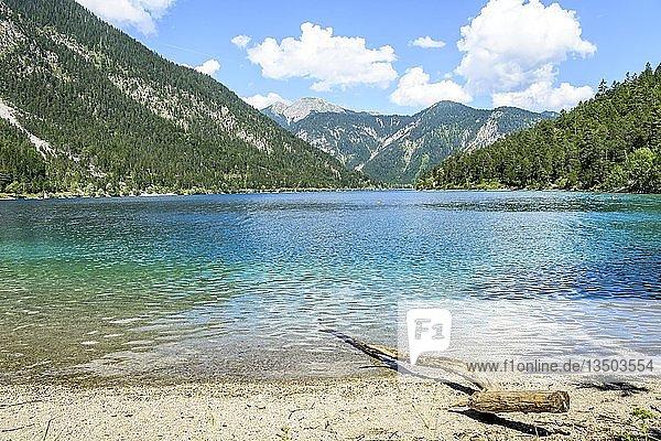 Treibholz am Ufer  Plansee  türkisfarbenes Wasser  Bergsee  Berglandschaft  Tiroler Alpen  Reutte  Tirol  Österreich  Europa