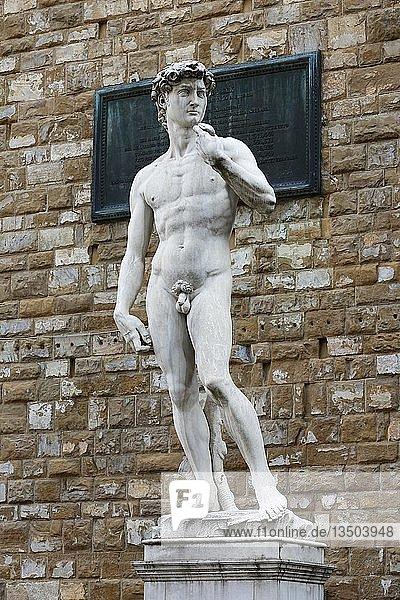 Marmorstatue David von Michelangelo vor Palazzo Vecchio  Piazza della Signoria  Altstadt  Florenz  Toskana  Italien  Europa
