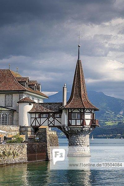 Schloss Oberhofen  Oberhofen am Thunersee  Kanton Bern  Schweiz  Europa