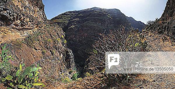 Panorama mit Wanderer von der Schlucht des Barranco de Guarimiar  La Gomera  Kanarische Insel  Spanien  Europaa  Europa